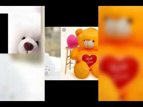 Teddy Bears Photos Collection