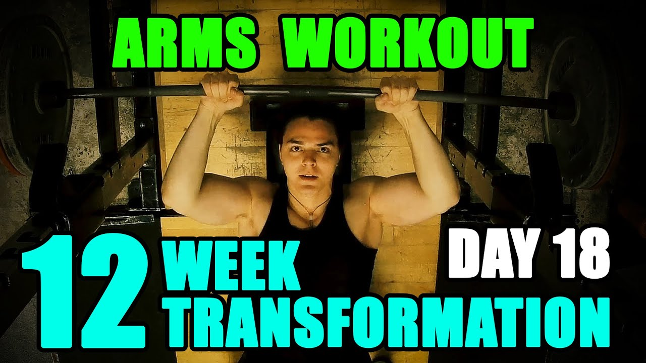 Arnold schwarzeneggers blueprint to cut arms workout l 12 week arnold schwarzeneggers blueprint to cut arms workout l 12 week transformation challenge l day 18 malvernweather Image collections
