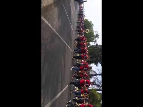 Virgil green parade