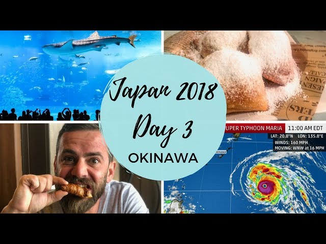 Japan 2018 Trip Day 3: Typhoon Maria and Okinawa Churaumi Aquarium