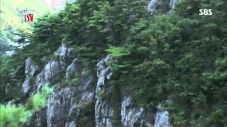 궁금한 이야기Y (김석훈, 허수경) 2013-08-30 #2(7)