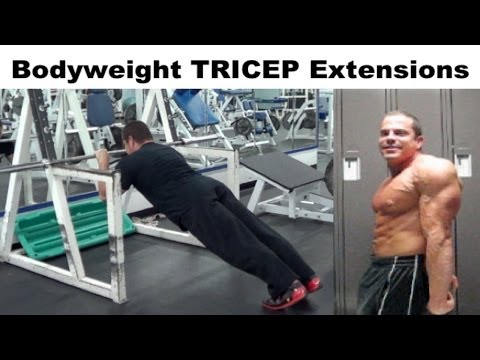 Bodyweight TRICEP Extensions Workout