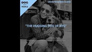 Ep 14 - The Hugging Dog of NYC w/ Cesar Fernandez Chavez (Teaser)
