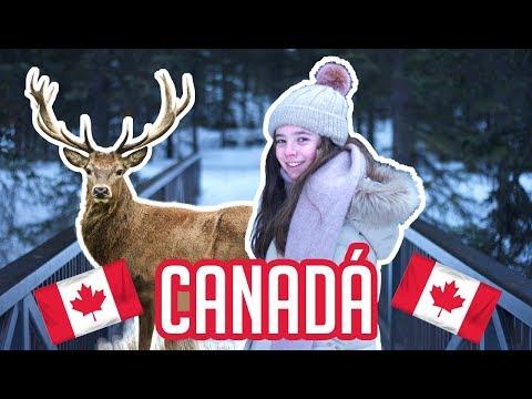 Vi unos Venados / Blog de Canadá