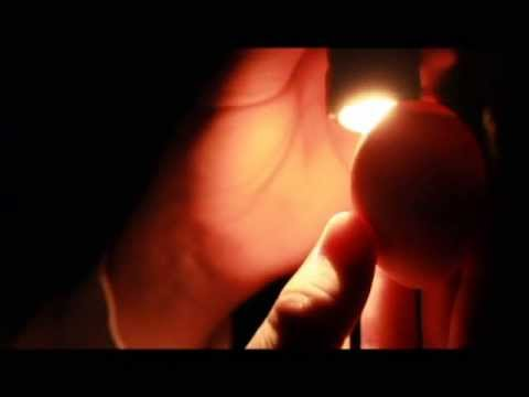 Amazing Chicken Egg Candling In HD! Day 10
