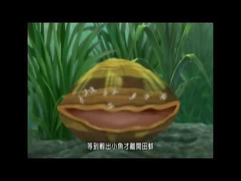 環境教育宣導影片 pic