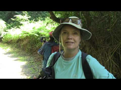 Eden Adventures & The Giant Kingfisher Trail