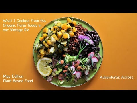 What I Cooked from the Organic Farm Today in our Vintage RV - Adventures Across