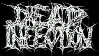 Dead Infection-CSSO-Worst
