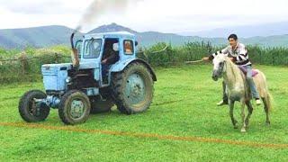 Лошадь или Трактор Т40 | Прикольные Гонка