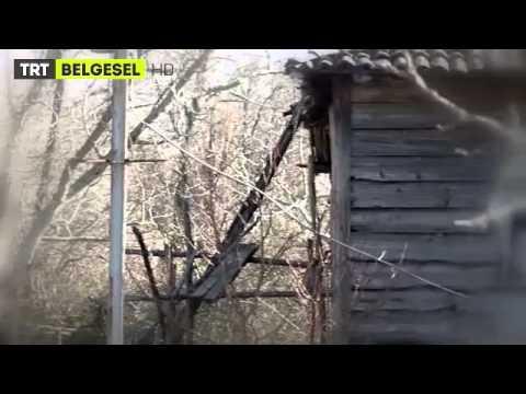 Toprak Kokusu - Fragman   TRT Belgesel