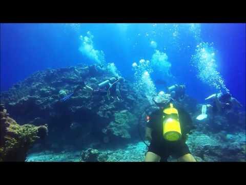 Veteran's Day Dive 2016 Kwajalein, Marshall Islands