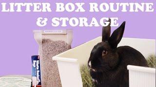 Rabbit Litter Box Routine