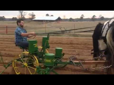 Horse Drawn John Deere Corn Planter Youtube