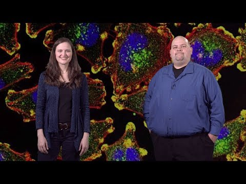 Bioimage Analysis 1: The Basics: Getting Started (Anne Carpenter And Kevin Eliceiri)