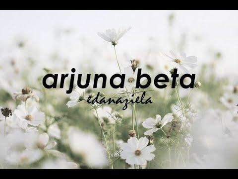 Arjuna Beta / Fynn Jamal (Eda Naziela cover)