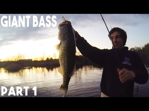 Giant Bass Pond Fishing- Oklahoma Trip #1