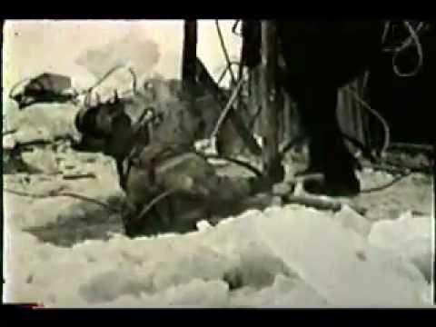 Bulldozer on bottom of frozen Yukon River, AK 1944