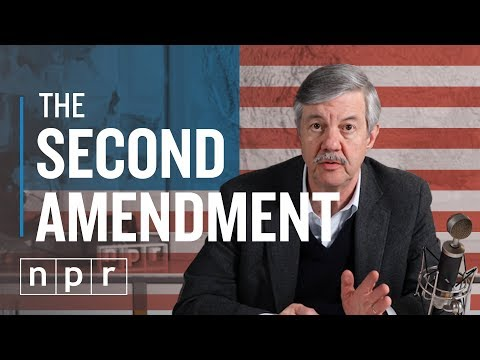 So, You Want To Repeal The 2nd Amendment | Ron's Office Hours | NPR