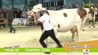 Championne Sénior HD
