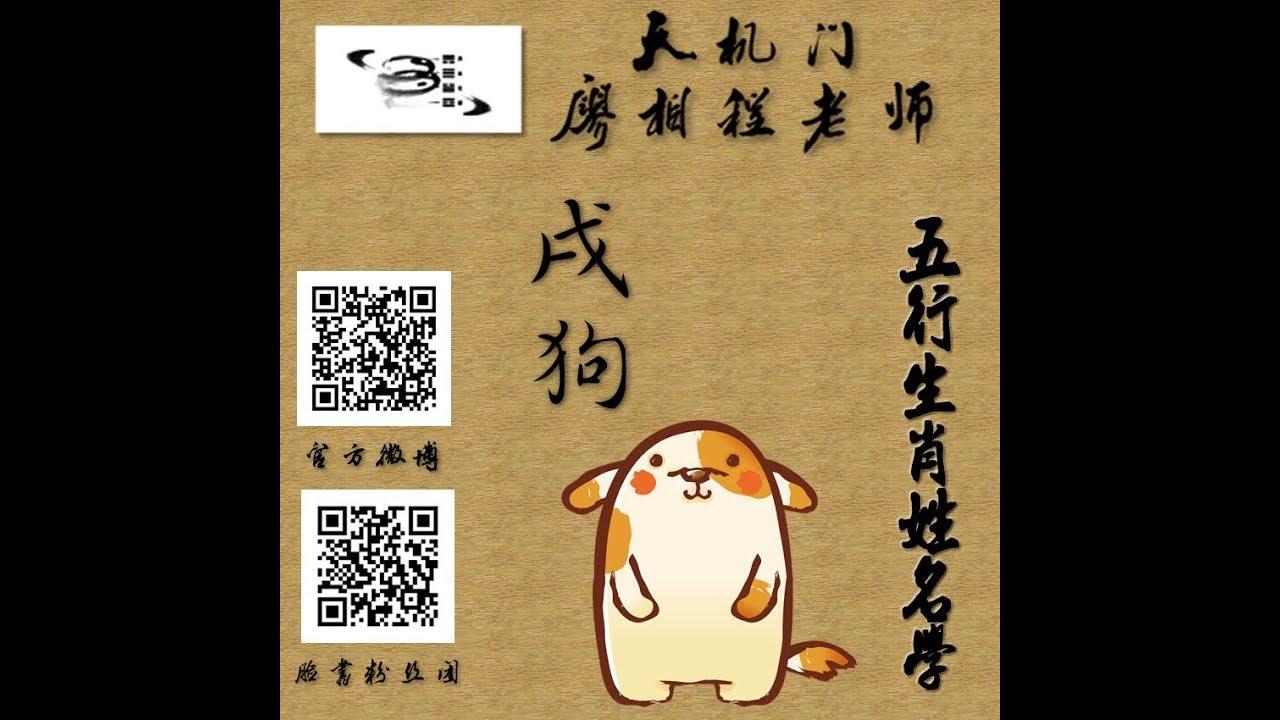 五行生肖姓名學 11狗 - YouTube