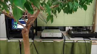 JBL4312SXとTDA7294アンプで聴く♪ リスニングポイントの音😢
