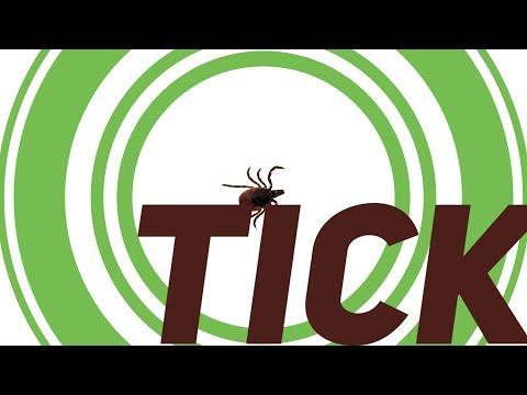 Friendly Reminder: Tick-Borne Diseases