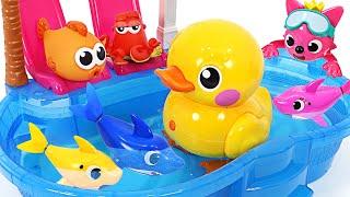和鯊魚家族碰碰狐一起游泳吧!機器人活著的鴨子一起玩 | PinkyPopTOY