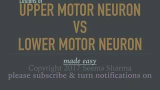Upper Motor Neuron vs Lower Motor Neuron Lesions Made Easy