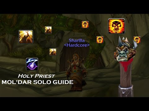 How To Solo Guard Mol'dar In DM North As Holy Priest