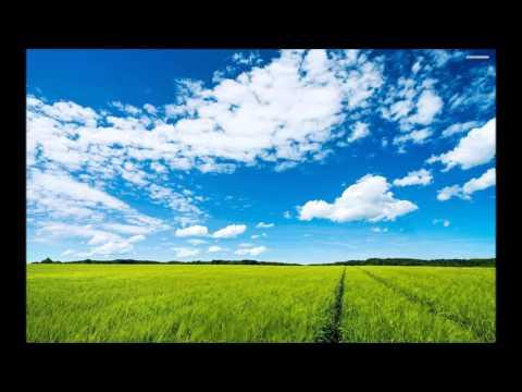 Alan Walker Sky Download-