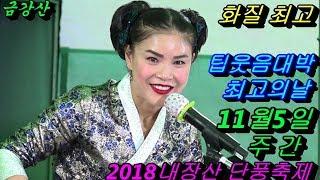 💗버드리 얼굴에 립스틱자국 뽀뽀웃음대박💗11월5일 주간 2018 내장산 단풍축제 초청 공연