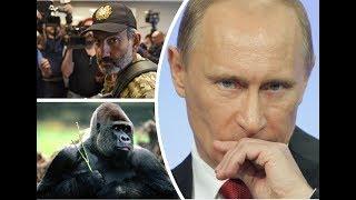 Putin Ermənistanı çox pis TƏHQİR ETDİ!!!