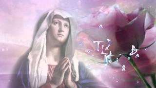Tấu Lạy Bà- Ave Maria ( Bài 5) -Hàn Mặc Tử- Liên Bình Định 2014