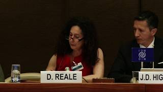 Panel V: Promoting resilience and agency in support of vulnerable migrants