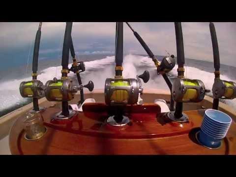 Los Suenos 19 Blue Marlin