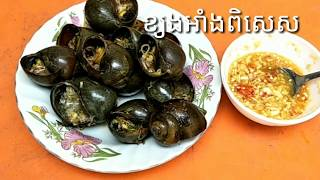 How to Cook Special Grilled Snail-Special Recipes - ខ្យងអាំងពិសេស
