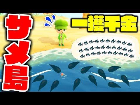 森 サメ 島 あつ