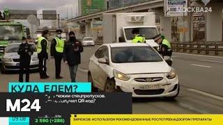 Чем грозит отсутствие спецпропуска для передвижения по городу - Москва 24