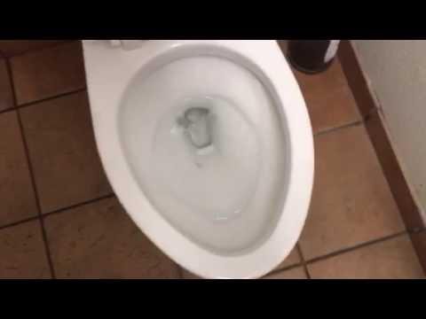 toto drake toilet