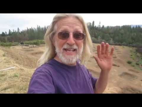 Grow Marijuana: Big Outdoor Cannabis Garden Ready to Plant