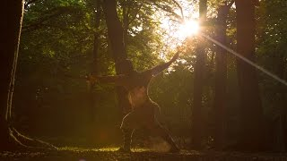 Shaolin Kung Fu: Exercise your Mind (TMProjection)