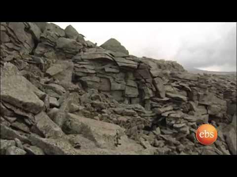 Discover Ethiopia, Bale mountain national park  part 2