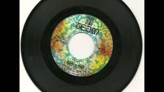 Shadows Of Knight - Shake 1969