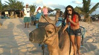 Video El Vistazo Brasil Ep. 02 (Playas de Natal) download MP3, 3GP, MP4, WEBM, AVI, FLV Juli 2018