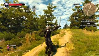The Witcher 3: Beheading ( Enthauptung )