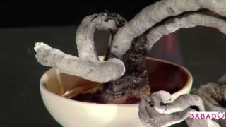 видео Набор для опытов «Вулкан» (4М)