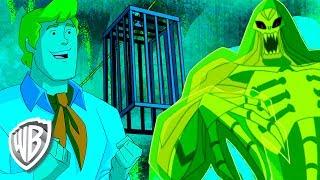 Scooby-Doo! en Français | Le gang tend un piège
