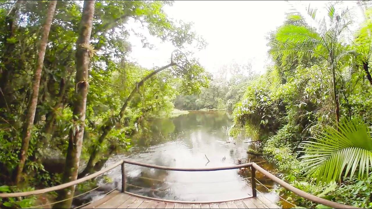 Parque das Neblinas - Trilha da Cachoeira