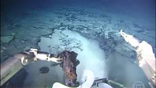 Primeiras imagens do fundo do Oceano Atlântico Sul são divulgadas thumbnail
